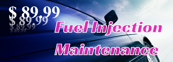 Fuel Injection Maintenance